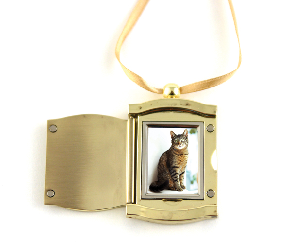 Golden frame pendant myers pets at peace urn gallery shop c402goldenframependant2 aloadofball Choice Image